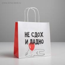 Пакет подарочный «И ладно»